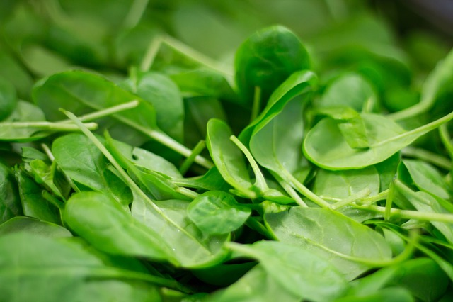 spinach for juicing